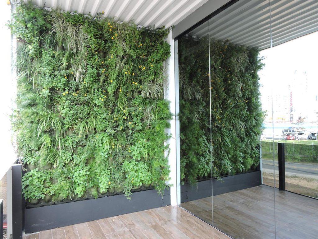 Jardins verticais - Theo Arquitetura e Paisagismo